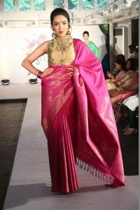 Palam Silks Light Up 2016 Diwali Concept Collection Launch Stills