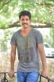 Director Veeru Potla Interview about Eedu Gold Ehe Movie Photos