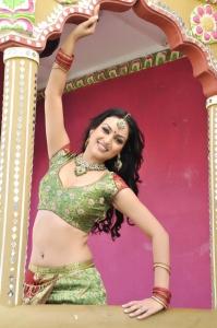 Telugu Actress Maryam Zakaria Hot Spicy Stills