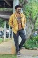 Venky Mama Movie Hero Venkatesh Interview Stills