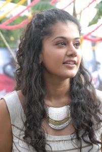 Taapsee Cute Stills at Vasul Raja Movie Launch