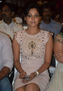 Tamil Actress Bindu Madhavi New Hot Stills