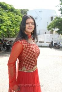 Sanchita Padukone Photos in Traditional Dress