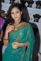 Telugu Actress Jareena in Green Saree Photos