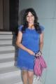 Hot Actress at Shivani Movie Audio Launch Photos