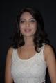 Actress Adonika at Aravind 2 Movie Audio Release Photos