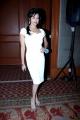 Pooja Kumar at Vishwaroop Premiere in Videocon d2h Launch Photos