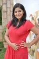 Actress Tanusha Hot Photos at Amma Nanna Oorelithe Press Meet