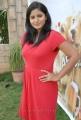 Tanusha Hot Photos at Amma Nana Ooru Velite Press Meet