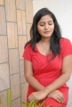 Actress Tanusha Hot Photos at Amma Nana Ooru Velite Movie Press Meet