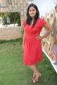 Tanisha Hot Photos at Amma Nanna Vurelthe Launch
