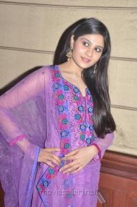 Actress Vibha Natarajan at Summa Nachunu Irukku Movie Press Meet Stills