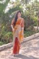 Telugu Actress Jiya Khan Hot Saree Photos