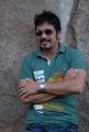 Actor Nagarjuna Greeku Veerudu Interview Stills