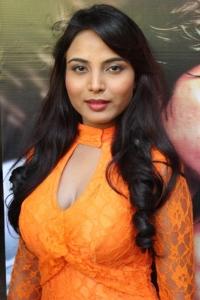 Hot Actress At Marumugam Movie Press Meet Stills