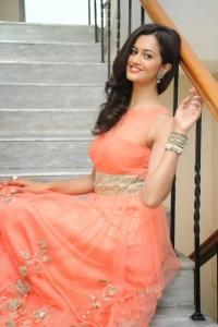 Actress Shubra Aiyappa @ Prathinidhi Movie Success Meet Stills
