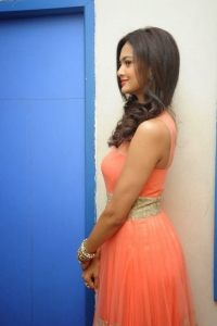 Actress Shubra Aiyappa Pictures at Prathinidhi Success Meet