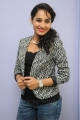 Actress Pooja Ramachandran Stills @ Adavi Kachina Vennela Audio Launch