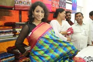 Telugu Actress Deepu Naidu Pics @ Pochampally IKAT Art Mela 2014