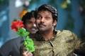 Arya's Vasuvum Saravananum Onna Padichavanga (VSOP) Movie Pictures