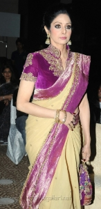 Actress Sridevi @ 13th GR8! Women Awards 2014 Stills Hyderabad