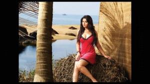 Richa Gangopadhyay Hot Photo Shoot @ CCl Calendar 2012