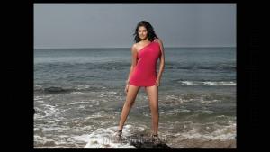 Priyamani Hot Photo Shoot @ CCl Calendar 2012