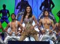 Shruti Hassan at 59th South Indian Filmfare Awards Stills