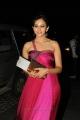 Rakul Preet Singh @ 60th Filmfare Awards South 2013 Stills