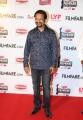 RP Patnaik @ 63rd Britannia Filmfare Awards South 2016 Stills
