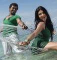 7th Sense Telugu Movie Stills