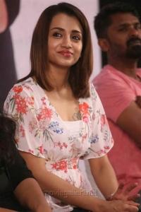 Actress Trisha @ 96 Movie Press Meet Stills