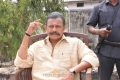 Mithun Chakraborty in Aadi Pinisetty Latest Movie Stills