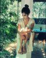 Actress Aaditi Pohankar Photoshoot Stills