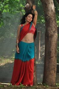 Aakasam Lo Sagam Actress Asha Saini in Saree Hot Pics