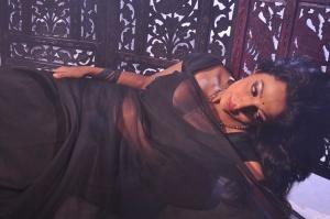 Aakasam Lo Sagam Actress Asha Saini Hot Saree Stills