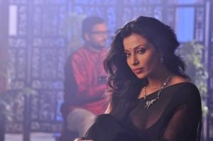 Aakasam Lo Sagam Actress Asha Saini Hot Saree Pics