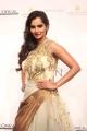 Sania Mirza @ Aamby Valley India Bridal Fashion Week 2013 Photos