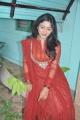Actress Idhaya at Aandava Perumal Press Show Photos