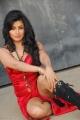 Aarthi Puri Hot Stills Pictures Photos
