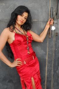 Aarthi Puri Photo Shoot Stills