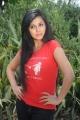Aarthi Puri Photos @ Sanghatana Movie Launch