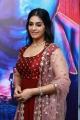 Actress Dakshita @ Aaruthra Audio Launch Stills