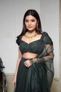 Actress Aathmika Green Dress Pictures @ Vijaya Raghavan Pre Release