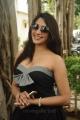Kesha Khambhati @ Aayirathil Iruvar Movie Press Meet Stills