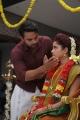 Tovino Thomas, Pia Bajpai in Abhiyum Anuvum New Images HD