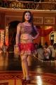 Shweta Basu Prasad Hot in Acham Thavir Movie Stills