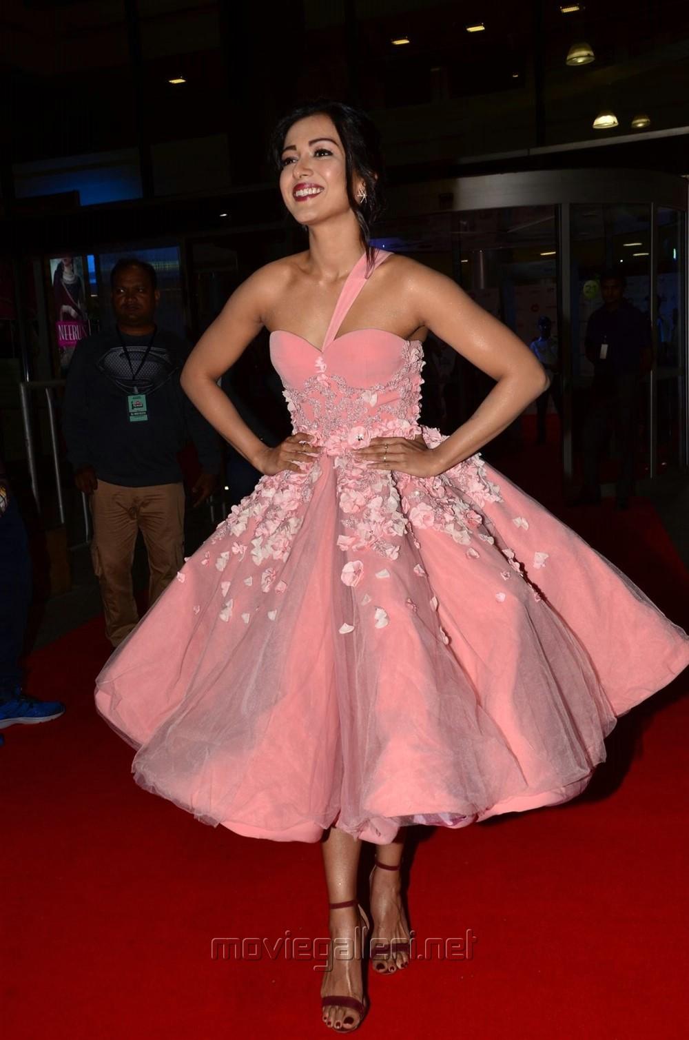 Actress Catherine Tresa @ 64th Filmfare Awards 2017 South Red Carpet Stills