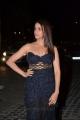 Actress Lavanya Tripathi @ 64th Filmfare Awards 2017 South Red Carpet Stills