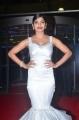 Actress Sanchita Shetty @ 64th Filmfare Awards 2017 South Red Carpet Stills